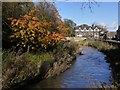 NZ1672 : River Pont approaching Ponteland Bridge by Andrew Curtis