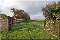 SS5345 : A gate on the footpath between Francis Farm and the Old Barnstaple Road by Roger A Smith