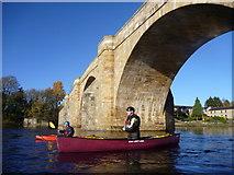 NY9170 : Paddling under Chollerford Bridge by Andy Waddington
