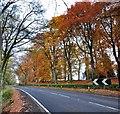 NN9123 : Autumn at Abercairny by Adam Ward