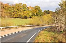 NS3488 : A817 near Loch Lomond by Steven Brown