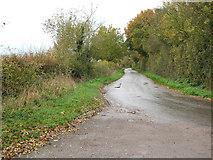 TM2490 : To Shelton Green on Room Lane by Evelyn Simak