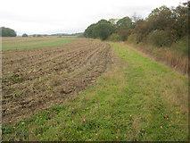 SK6959 : Arable land near Roe Wood by Trevor Rickard