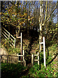 SJ8860 : Steps up to the trail by Jonathan Kington