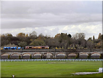 SJ3965 : Chester Viaduct And The Roodee by David Dixon