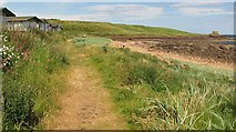 NO6208 : Fife Coast Path by Richard Webb