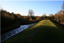 SK4833 : Flood bank overspill with water by David Lally