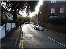 TQ1666 : Watts Road, Thames Ditton by Stacey Harris
