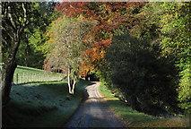 NN7421 : Estate road near Aberuchill Castle by Trevor Littlewood
