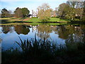 SJ6880 : Houses and pond at Arley Green by Colin Park