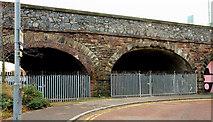 J3473 : Railway arches, Belfast (5) by Albert Bridge