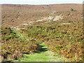 SE4699 : Path near Cod Beck Reservoir by Maigheach-gheal