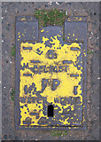 J3372 : Fire hydrant cover, Belfast by Rossographer