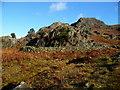 SD2397 : Sheepfold above Tarn beck by Michael Graham