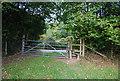 TQ6132 : Sussex Border path arrives at Buckhurst Lane by N Chadwick