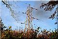 J3068 : Pylon and power lines, Dunmurry by Albert Bridge