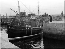 NK0066 : Fishing boat in Fraserburgh harbour by Eileen Warren