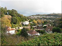 SX9364 : View from Kent's Cavern's Car Park, Torquay by Gareth James