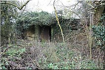 SU6570 : Overgrown by the bank by Bill Nicholls