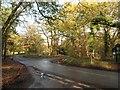 SU9484 : Junction by Burnham Beeches by Derek Harper