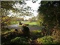 SU9385 : Bridleway meeting Dropmore Road by Derek Harper