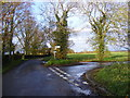 TM3982 : Butts Road, Cox Common by Adrian Cable