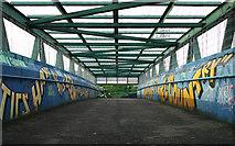 J3272 : Footbridge, Belfast by Rossographer