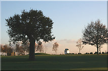 TQ8789 : Golf Course View by terry joyce