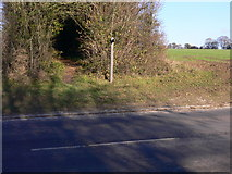 SU8016 : Footpath crosses B2141 at East Marden by Shazz