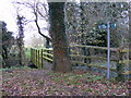 TM3154 : Footpath to Quill Farm & Mill Lane by Adrian Cable