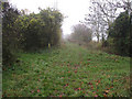 TL3662 : Footpath junction by Hugh Venables