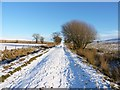 SO3898 : Up the bridleway towards Leasowes by Richard Law