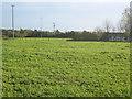 SO9047 : Grazing land near Wadborough by Trevor Rickard