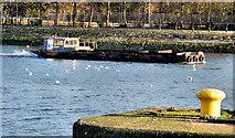 J3473 : Dredging the River Lagan, Belfast -  2010/11 (74) by Albert Bridge