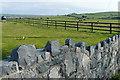 R1452 : Farmland at Mountshannon East by Graham Horn