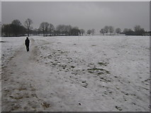 TQ7668 : Snowy path in the Great Lines Park by David Anstiss
