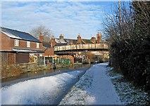 SO8171 : Baldwins Bridge no. 5A, Staffordshire & Worcestershire Canal by P L Chadwick