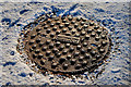 J3875 : Mallons manhole cover, Belfast by Albert Bridge