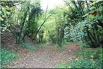TQ5359 : Footpath to Otford Station by N Chadwick