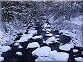 NS7883 : River Carron, Fankerton by Robert Murray