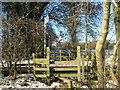 TQ4357 : Footpath crosses Buckhurst Road by David Anstiss