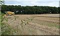 NU1336 : Farmland near Belford (3) by Stephen Richards
