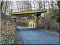 SD7314 : Railway Bridge, Chapeltown Road by David Dixon