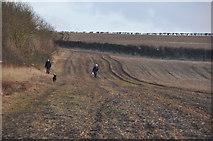 SY0280 : East Devon : Walking the Dog by Lewis Clarke