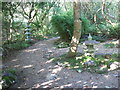 SW8766 : Path in the Japanese Garden, St Mawgan by C P Smith