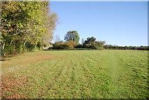 TQ8224 : Sussex Border Path to Northiam by N Chadwick