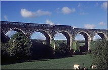 SW9451 : Coombe St Stephen viaduct by roger geach