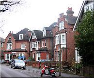 TQ1572 : Waldegrave Gardens, Strawberry Hill by David Kemp