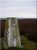 SK3068 : Trig pillar on Beeley moor/Harland south. by steven ruffles