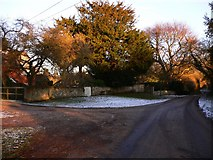 SU7431 : The road at Empshott Green by Shazz